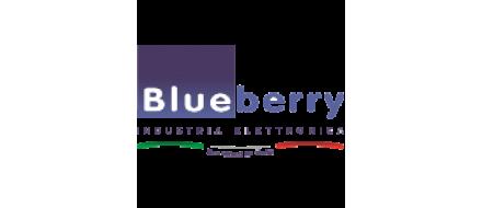 BlueBerry Listino